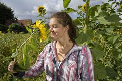 Girl smelling on a sunflower Stock Image