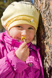 Girl smelling a yellow flower coltsfoot Royalty Free Stock Image
