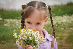 Girl smells chamomile Stock Photography