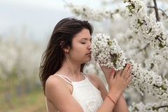 Girl smells the flower of a cherry tree Royalty Free Stock Photos