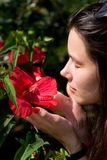 The girl smells a red flower. stock photos