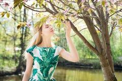 Girl smells sakura in park. Springtime, spring. Girl smells sakura. Springtime, spring Stock Photography