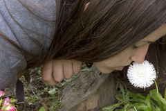 Girl smells white flower. S in the garden Royalty Free Stock Photography