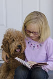 Girl smile reading with dog. Close-up of a young pre-teen girl with her arm around her dog reading by her front door Royalty Free Stock Image