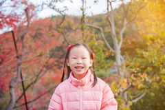 Girl smiling in autumn park stock photography