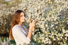 Girl smiling on the background of a flowering tree stock image