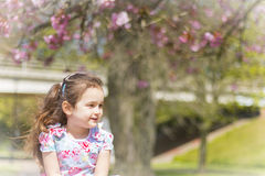 Girl smiling. Little girl standing in front of a gorgeous tree with a lovely smile on her face Royalty Free Stock Photo
