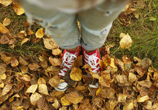 Girl in sneakers standing on autumn leaves. Feet in autumn leave Stock Images