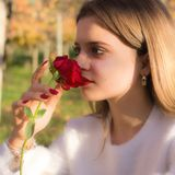Girl sniffing a red rose in San Valentine day. A Girl sniffing a red rose in San Valentine day Stock Images