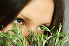 Girl sniffing rosemary Stock Images