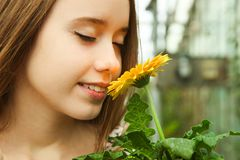 Girl sniffs yellow gerbera flower. Beautiful young smiling girl sniffs yellow gerbera flower. Clothe-up, copy space royalty free stock photography