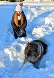 Girl in snow and Dog Stock Images