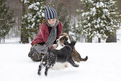 Girl in the snow with her dogs Stock Image