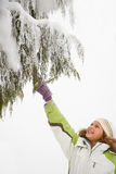 Girl and snowy branches Stock Photo