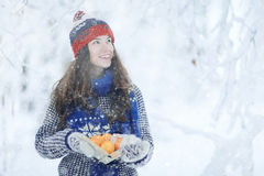 Girl in snowy park Stock Photography