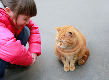 Girl speaking with cat. On the street stock images