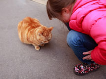 Girl speaking with cat. On the street stock photos