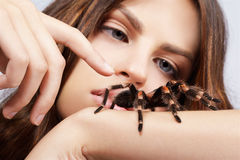 Girl with spider. Close-up portrait of girl stretching out finger to touch brachypelma smithi spider Royalty Free Stock Photos