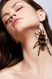 Girl with spider. Close-up portrait of girl with brachypelma smithi spider creeping over her neck Royalty Free Stock Images