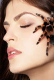 Girl with spider. Close-up portrait of girl with brachypelma smithi spider creeping over her face Royalty Free Stock Images