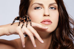 Girl with spider. Close-up portrait of girl with brachypelma smithi spider creeping over her hand Stock Image