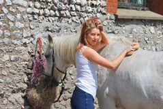 Girl sponging horse Royalty Free Stock Images