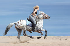Girl and spotted horse Stock Photography
