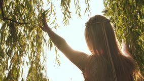 Girl spreads willow branches in the sun. Girl spreads willow branches in the sun stock footage