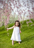 Girl in spring Royalty Free Stock Photo