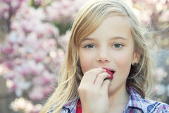 Girl in spring Royalty Free Stock Photos