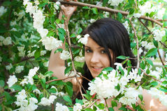 Girl and spring apple tree Stock Image