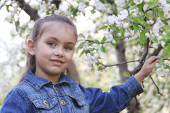 Girl among spring blossom trees royalty free stock photography