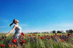 Girl in spring field. Beautiful girl in blooming spring field Stock Photography