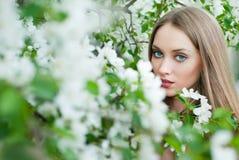 Girl in spring flowers Stock Photo