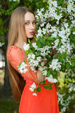 Girl in spring flowers Royalty Free Stock Image