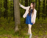 Girl in the spring forest Royalty Free Stock Photos