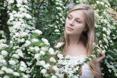 Girl in spring garden Stock Images