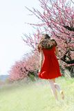 Girl in spring garden Royalty Free Stock Images