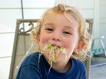 Girl sprouts Stock Images
