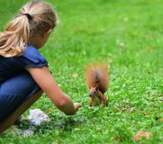 Girl with squirrel. Royalty Free Stock Photography