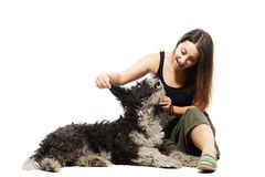 Girl and sreet dog isolated on white. Brunette girl playing with free-ranging urban dog against white background Royalty Free Stock Photos