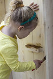 Girl staining the wood Stock Photography