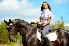 Girl on stallion Royalty Free Stock Photography