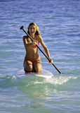 Girl on a stand up paddle board Royalty Free Stock Photography