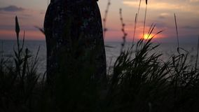 The girl is standing on the beach in a long skirt, developing in the wind, admiring the sunset at the sea. HD, 1920x1080 stock video