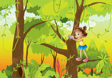 A girl standing at the branch of a tree with a camera Royalty Free Stock Photos