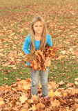 Girl standing in fallen leaves Stock Image
