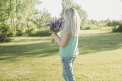 Girl is standing in the field with a bouquet of lupines. The girl is standing in the field with a bouquet of lupines Royalty Free Stock Photography
