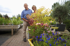 Girl (7-9) standing with grandparents behind plants on trolley in garden centre, smiling, portrait Royalty Free Stock Photos