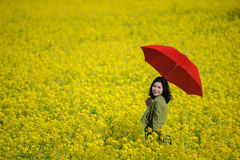 Red umbrella and canola Stock Photo